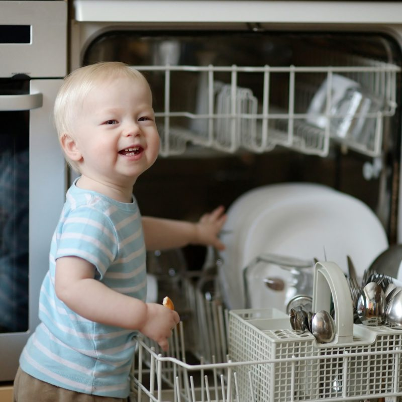 Common information about dishwashers